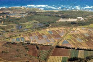 prawn-farms-ne-oahu