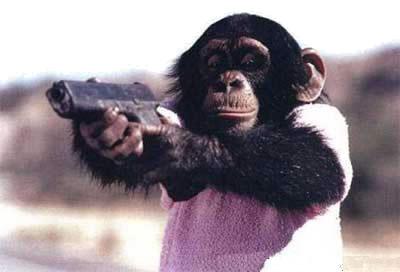 Widdle Chimpy Incontrera
